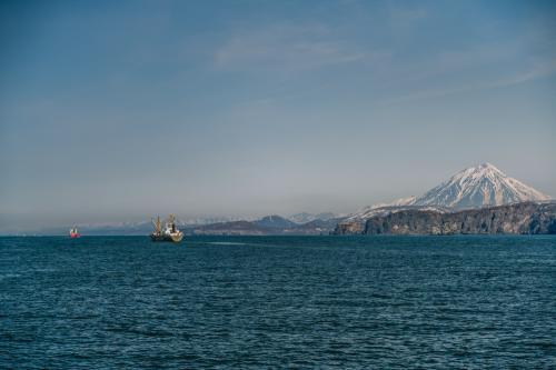 Больше 60% стоков сбрасывается без очистки в Авачинскую бухту - экологи. Фото Анастасии Юдаевой (Ерохиной), РАИ