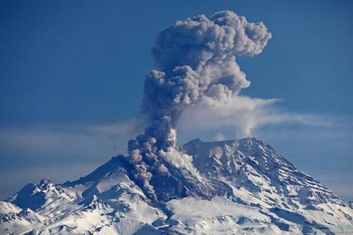 Вулкан Шивелуч на Камчатке выбросил столб пепла на 4 км. фото Юрия Демянчука (архив