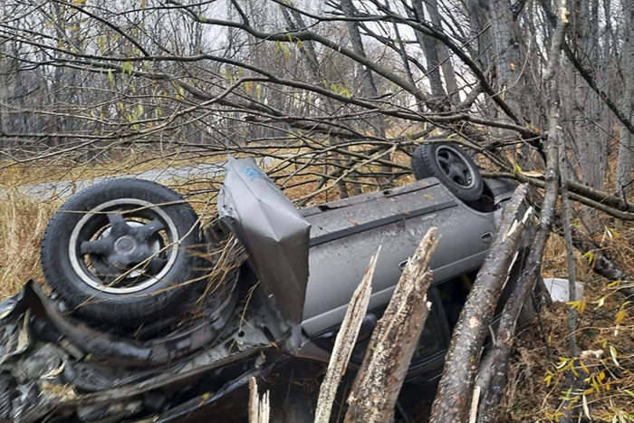 Не «летайте» по ночам: на Камчатке обледеневшая дорога привела к гибели человека . Фото: ОГИБДД по Елизовскому району