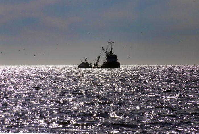 Лососевая путина завершилась на западном побережье Камчатки