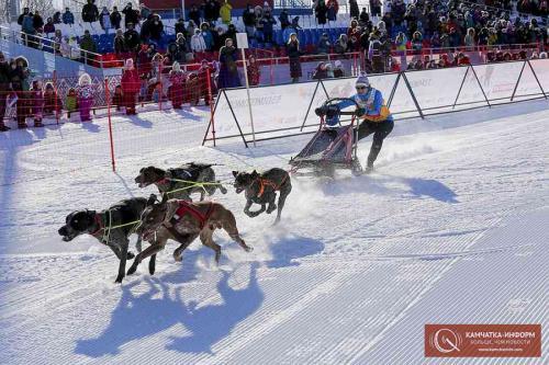 Первые 5 мест на гонке-прологе «Берингии» взяли женщины-каюры (фото). Фото: Василий Гуменюк, РАИ